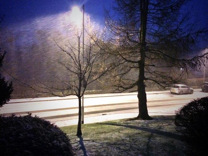 Diggle Snow 2014